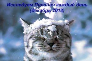 ежедневник для детей декабрь 2018
